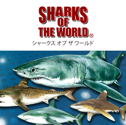 SHARKS OF THE WORLD logo